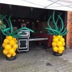 ballonpilaar ananas